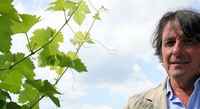 Stefano Zanette, Präsident des Konsortiums Prosecco DOC, im Weinberg mit einem Glas Prosecco DOC
